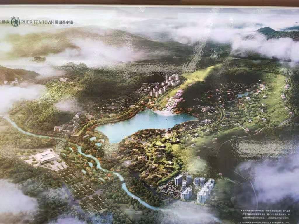 茶馬古道-服務周到的房地產中介公司推薦