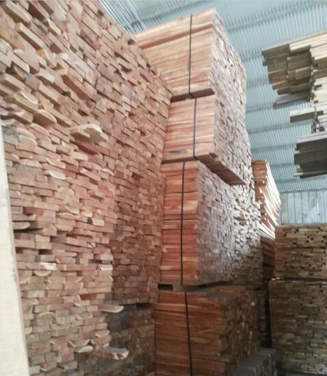廠家直銷楊木板材-河南靠譜的苦楝木板材供應商