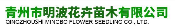 青州市明波花卉苗木有限公司