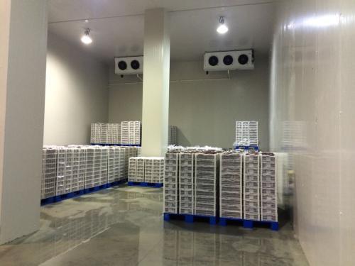 西安保鮮冷庫工程-可信賴的西安冷庫安裝服務商