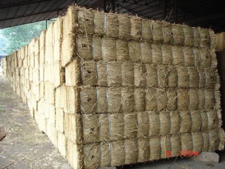 草支垫价格-黑河草支垫价格-鸡西草支垫价格
