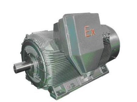 大功率防爆电机生产-新品大功率防爆电机在哪可以买到