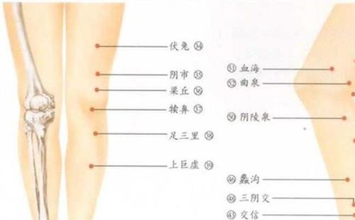 骨科术后康复|好的侧副韧带重建康复哪里有提供