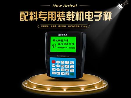 长沙装载机电子秤-淮北装载机电子秤买多少送多少