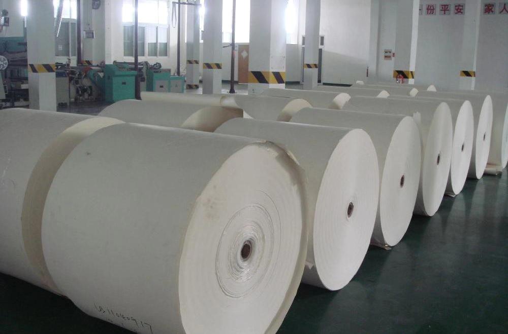 滨州淋膜纸_潍坊高性价比的淋膜纸供应