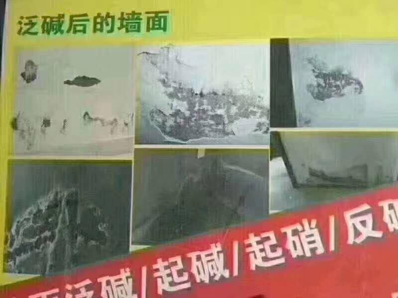 哈尔滨除霉除碱技术哪家可靠-黑龙江防水堵漏报价