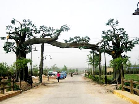 仿真古树批发商-潍坊优惠的仿真古树供应