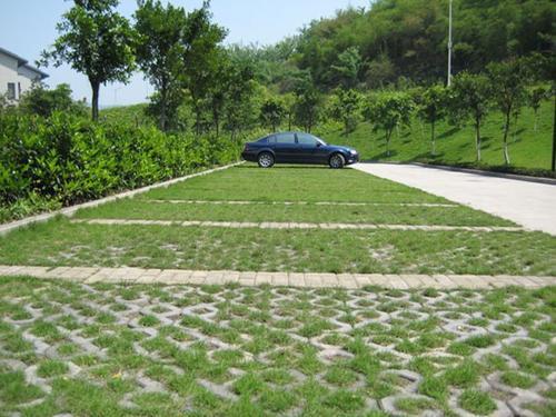 植草砖-草坪砖