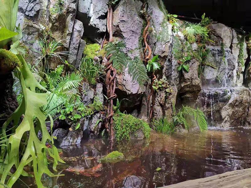 山西雨淋造景-洛阳雨淋造景设计-洛阳雨淋造景设计公司