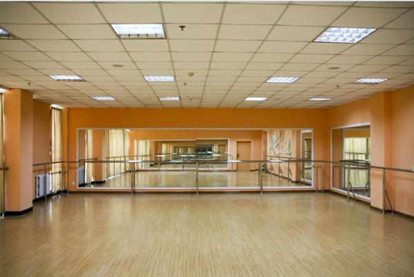 葫芦岛舞蹈房地板厂家-选购舞蹈房地板优选丽宸体育