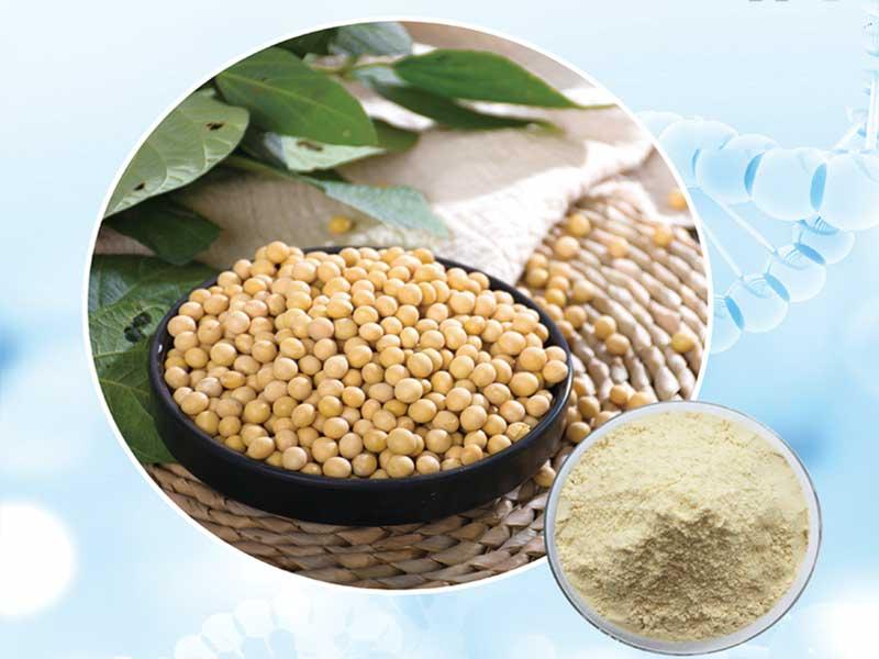 江苏大豆肽蛋白质粉作用