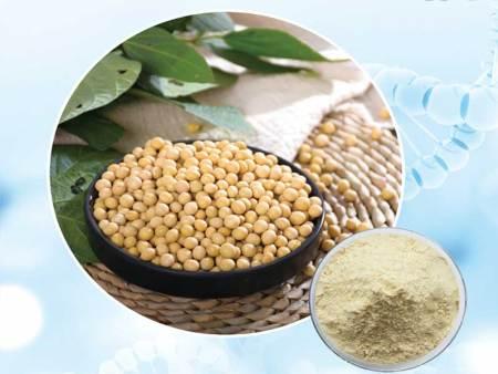 淮安大豆肽-德州蓝力生物好用的大豆肽批发
