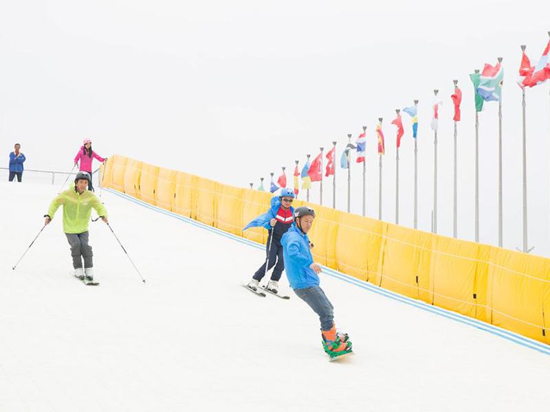 旱雪與彩虹滑道的區別,旱雪設備哪家強?