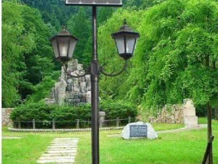 甘肅太陽能路燈銷售-平涼太陽能庭院燈安裝