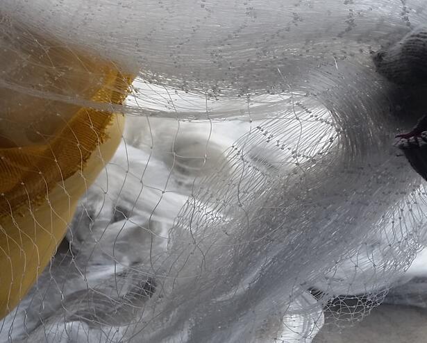 内蒙古防雹防鸟网生产厂家-北京防雹防鸟网-上海防雹防鸟网