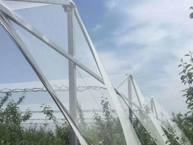 葡萄园防雹网