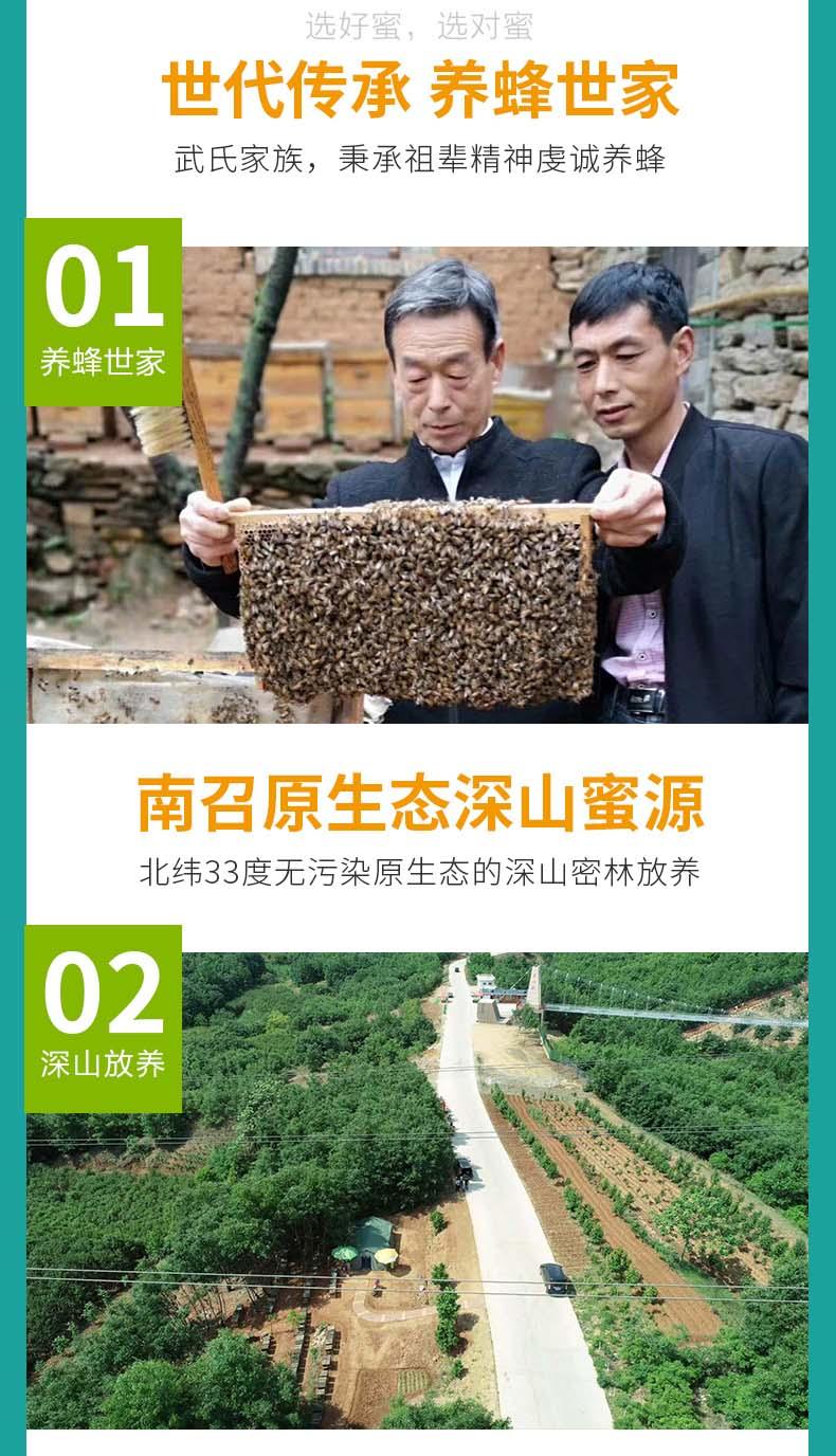 荆条蜜一件代发-南阳物超所值的荆条蜜批发供应