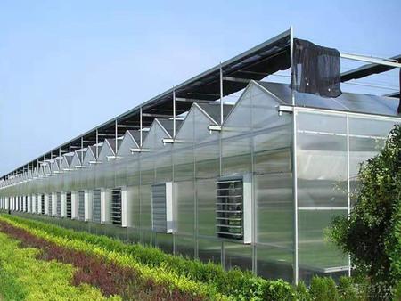 連棟溫室價格|哪里有提供高性價連棟溫室