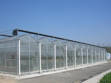連棟溫室設計建設-連棟溫室公司推薦