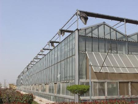 河南玻璃智能温室-湖南玻璃智能温室报价-湖南玻璃智能温室规格
