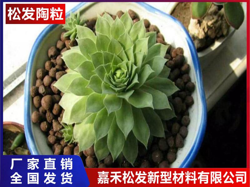 陶粒砌块-陶粒的检测项目有哪些-陶粒水培哪些花卉