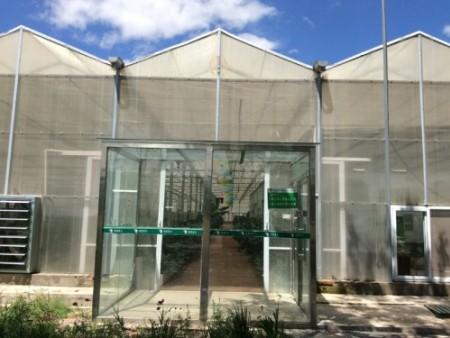 西安pc板温室大棚建造商-来瑾玉温室,买高质量的阳光板温室