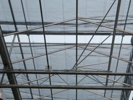 江苏智能温室大棚建造-价格实惠的阳光板温室潍坊市哪里有