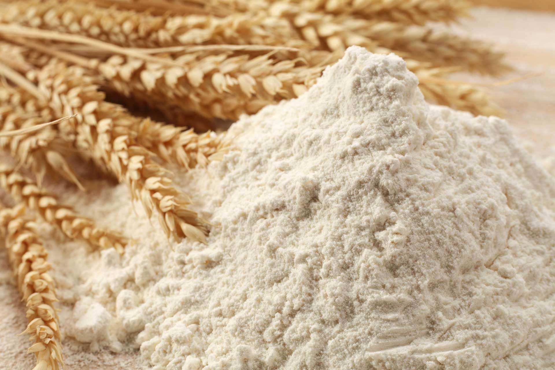 红寺堡石磨面粉-宁夏石磨面粉广告-宁夏石磨面粉成本