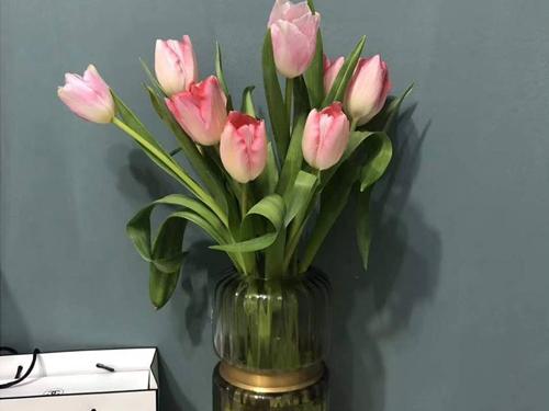 鲜花快送-实惠的家用鲜花价格