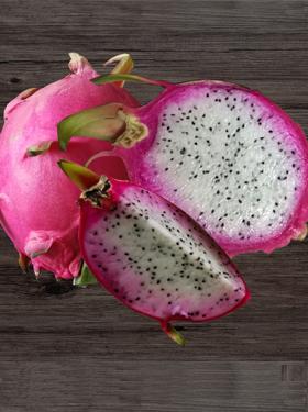 火龙果苗木上能嫁接蟹爪兰吗-顺义火龙果苗木-通州火龙果苗木