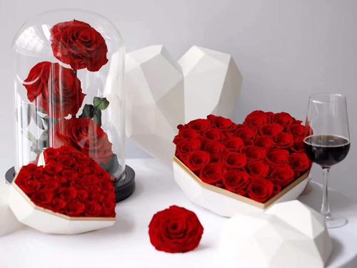 白玫瑰-玫瑰订购-百合订购