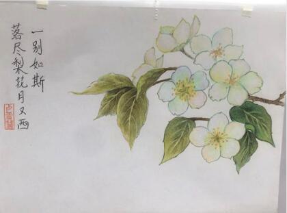 【兰州麟悦成人画室】兰州成人美术培训班 兰州零基础绘画学习班