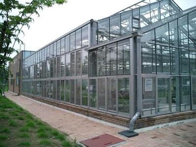 智能玻璃大棚//玻璃大棚建设