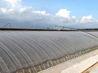 陽光板溫室大棚承建-新疆日光溫室-廣西日光溫室