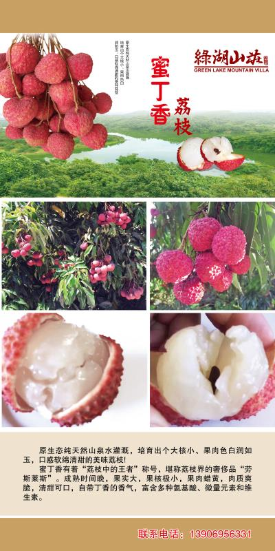 三明荔枝-鲜美的荔枝-爽口的荔枝