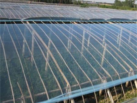 蔬菜大棚膜哪里有-广东养殖专用膜-海南养殖专用膜
