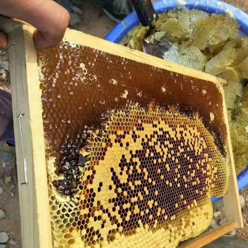 成都土蜂蜜批发_品质好的土蜂蜜上哪买
