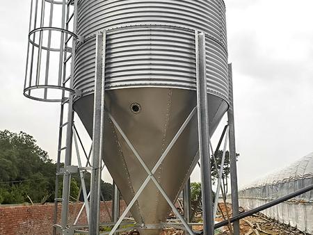 自动化养殖设备生产厂家-广东养鸡设备厂-黑龙江养鸡设备厂