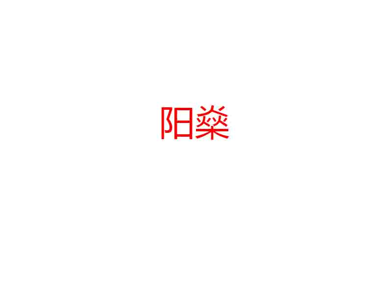 河南陽燊新能源科技有限公司