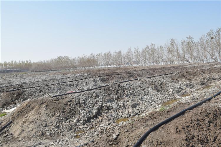 蚯蚓有机肥生产-新疆蚯蚓有机肥-吉林蚯蚓有机肥