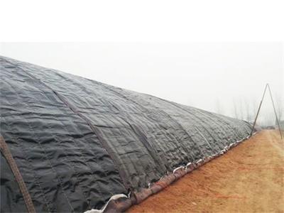 西城溫室大棚保溫被_臨沂高性價大棚保溫被推薦