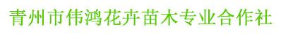 青州市伟鸿花卉苗木专业合作社