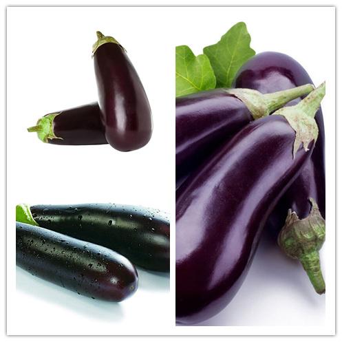 寿光圆茄|供应潍坊性价比高的茄子
