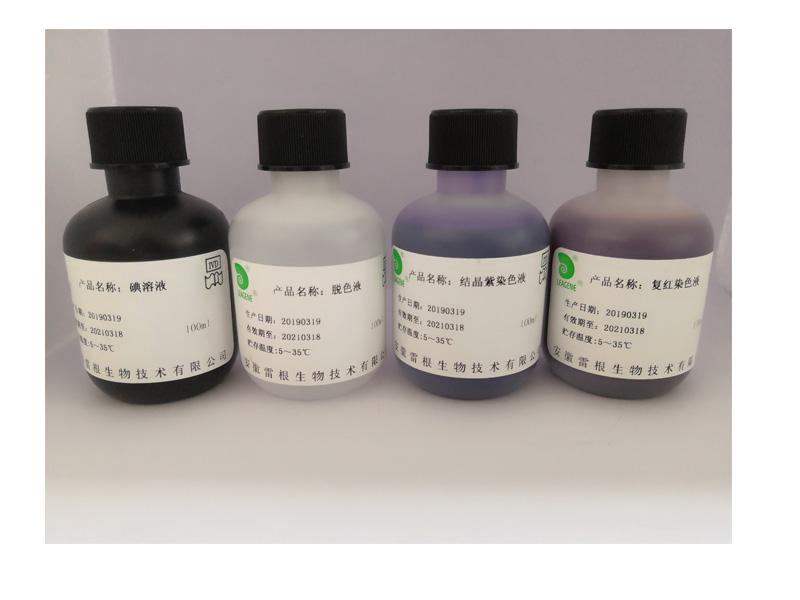 碱性磷酸酶染色液-组织包埋时固定液的种类