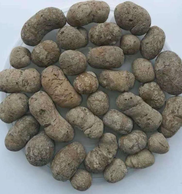 生物陶粒濾料廠家 生物陶粒濾料批發 生物陶粒價格