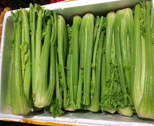 杭州食材批发-专业的食材配送推荐