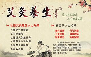 五毒月三伏天冬病夏治,广州伊璐生物科技 专业线艾灸养生厂家