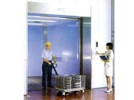 载物电梯维保-供应星游2注册用的别墅电梯