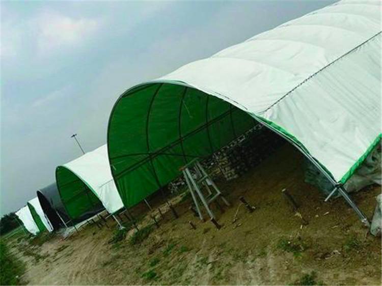 綠白膜廠家-吉林綠白膜-綠白膜批發商