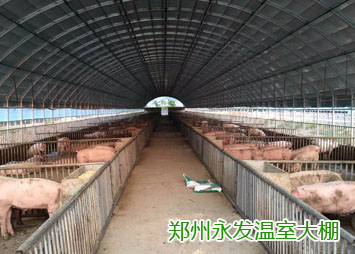 郑州养殖大棚-水产养殖大棚-生产厂家